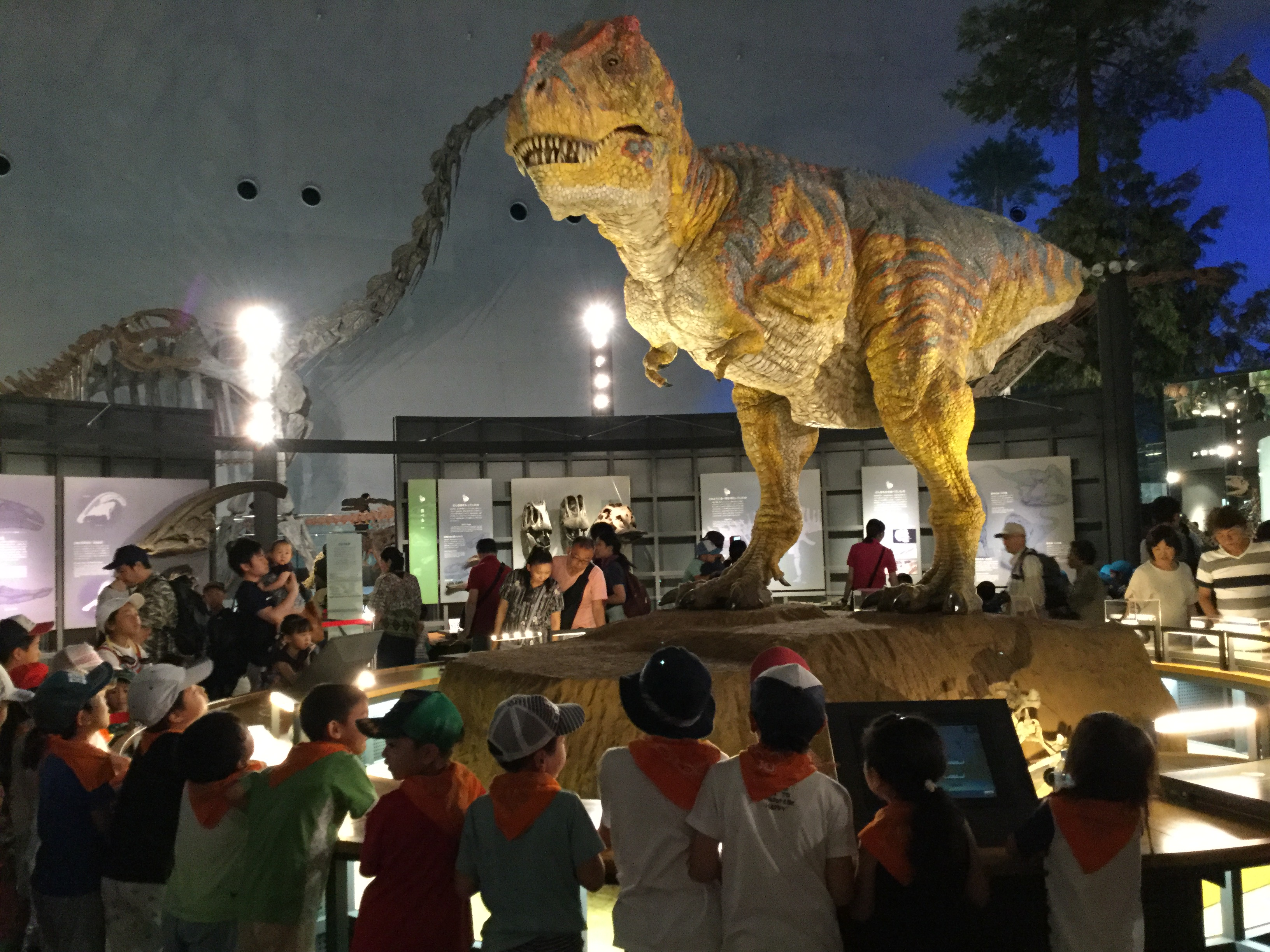 恐竜博物館へ行こう!