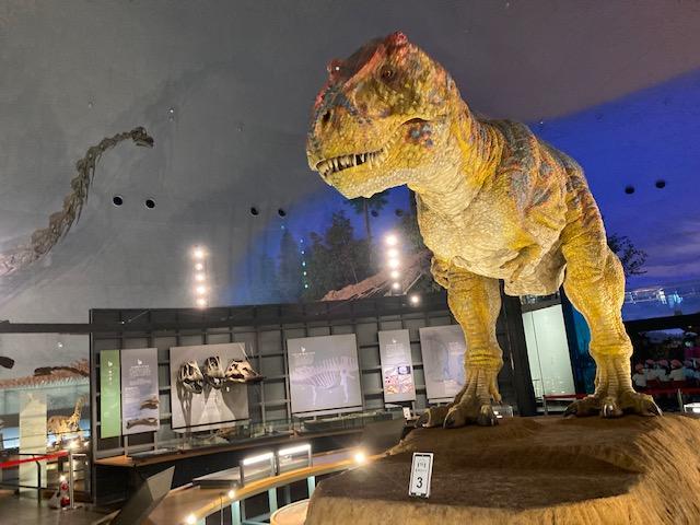 年長組 恐竜博物館見学